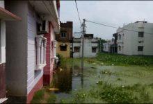 Photo of जल जमाव के कारण भूखमरी और महामारी का खतरा